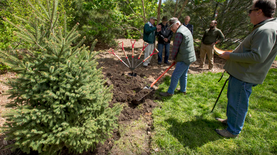 Bud Dasenbrock shovels dirt around the roots of the newly planted Engelmann spruce tree as other Arbor Day celebration participants look on.
