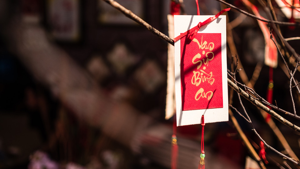 A Lunar New Year decoration hanging in a tree heralds Vietnamese calligraphy that translates to wishes of best luck for all. The Vietnamese Student Association will hold a festival celebrating Vietnamese culture on Feb. 15.