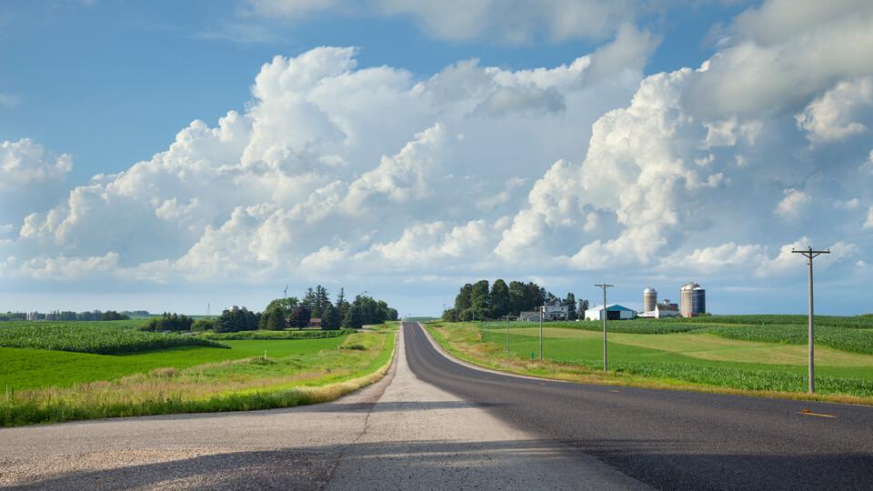 A rural asphalt road is flanked by crops.