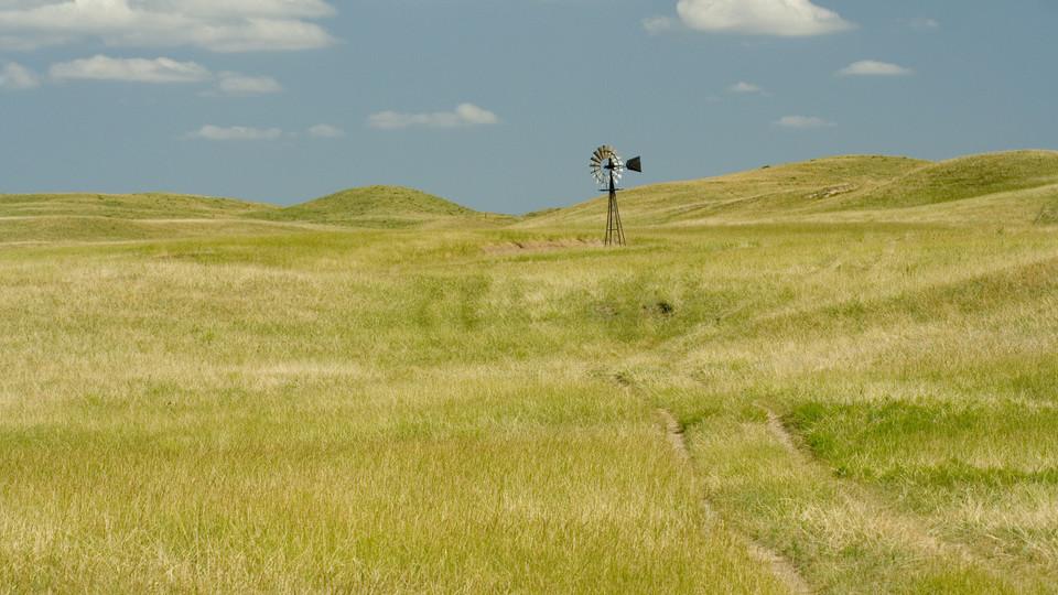 Nebraska grassland