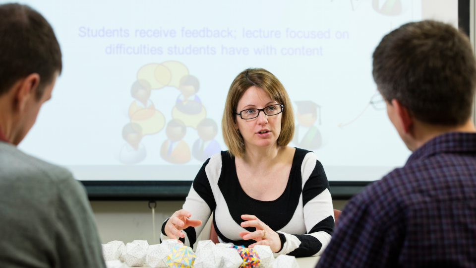 Marilyn Stains, UNL assistant professor of chemistry, is studying how science, technology, engineering and mathematics are taught at the university level and how to improve programs that train faculty to better teach science.
