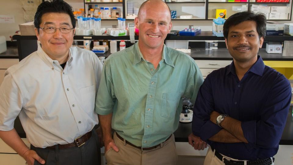 Research team members (from left) Hideaki Moriyama, Jay Storz and Chandrasekhar Natarajan.