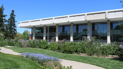 Collections return and café plans for Dinsdale Family Learning Commons
