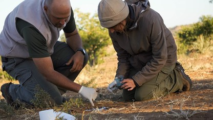 Students experience summer wildlife in Botswana