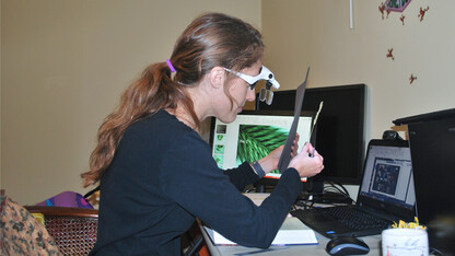 Dunn teaches grass identification in virtual hands-on lab