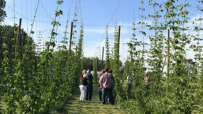 Hops production workshop is June 8