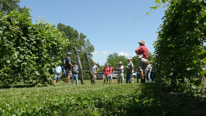 Viticulture workshop is June 20
