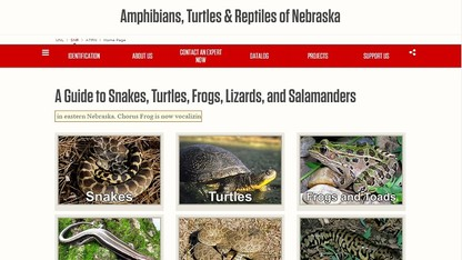 New website aims to educate public about herpetology