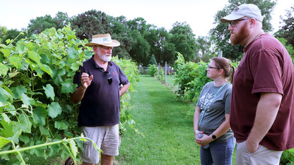 Vineyard tailgates offer glimpse into wine grape research