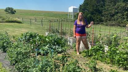 Gardening competition brings Nebraska students together virtually