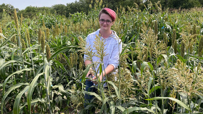Summer internship leads to scientific publication for high school student