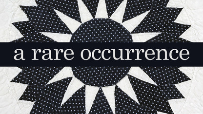 'A Rare Occurrence' opens at quilt musem