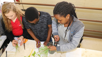 Students gain cover crop experience through competition