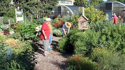Registration open for master gardener program