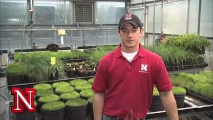 Nebraska Jobs: UNL Employment Opportunities