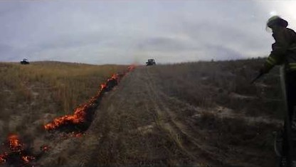 Prairie Fire: Controlling Invasive Species