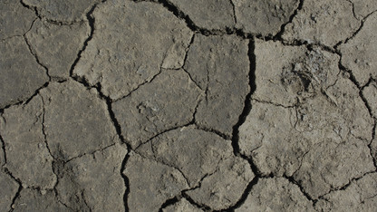 Drought Mitigation Center joins international research project