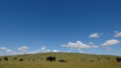 Research explores ag advisers' ability to communicate climate info