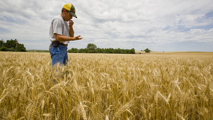 Forecast: Ag income still in doldrums; other sectors will grow