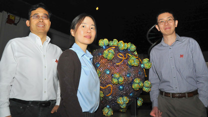 Grant funds new approach to HIV vaccine