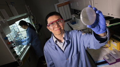 NSF grant supports chemist's work to expand genetic code