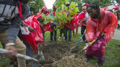 Fellows, Landscape Services celebrate Mandela Day