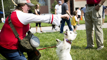 Campus going to the dogs again with DogFest