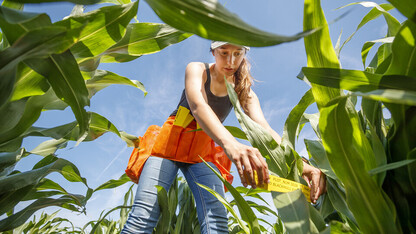 Nebraska celebrates National Farmer's Day