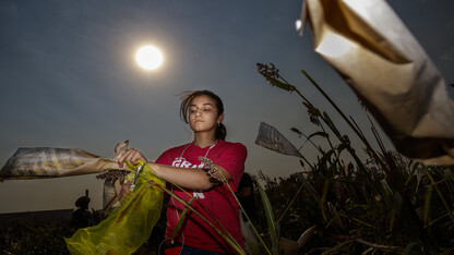 Harvest light   Photo of the Week