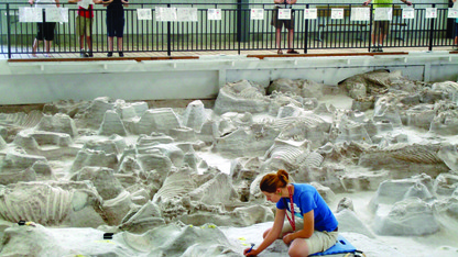 Ashfall's fossil and artifact identification day is Aug. 9