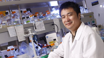 Sunday with a Scientist to feature Yu's gene silencing work