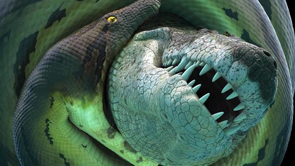 Titanoboa is coming to campus