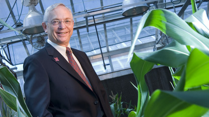 Researchers find key pieces to corn yield puzzle