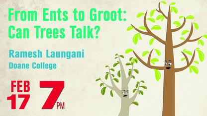 SciPop talk to explore how trees communicate