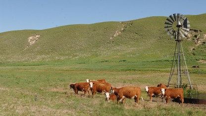 Beef Methane Conference is May 11-12 in Lincoln