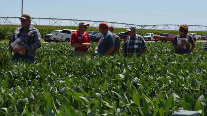 Soybean Management Field Days set for Aug. 9-12