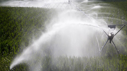 Water and crops field day offered Aug. 23