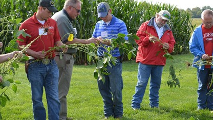 Extension offers crop diagnostic clinic, corn and soybean school