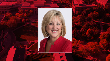 Plowman named executive vice chancellor, chief academic officer