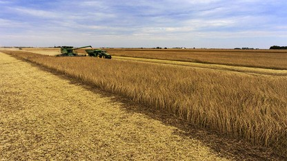 Ag land values decline for third consecutive year