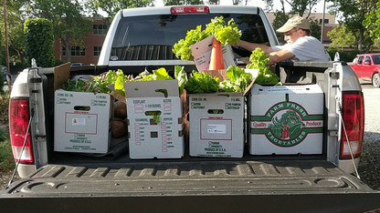 Extension seeks Lincoln's extra harvest to help those in need