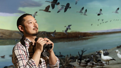 Shizuka to explore how population turnover changes birds' social networks