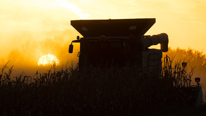 Experts release estimated 2019 crop production budgets