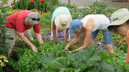 Nebraska Extension extends support for community gardens