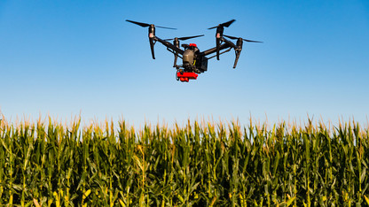 Grant to help corn, wheat growers manage nitrogen fertilizer application