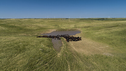 Nebraska ag land values up 6% for second-consecutive year