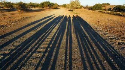 Students study Namibia ecosystems