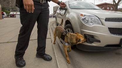 K-9s join University Police Department