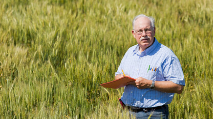 Baenziger supports growers through small-grains program