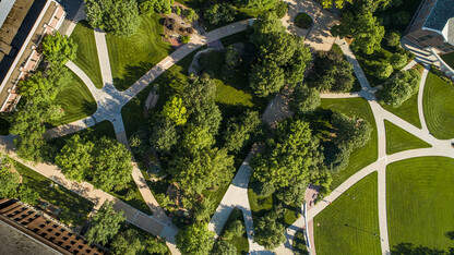 University to pilot tree canopy map project with Nebraska Environmental Trust grant